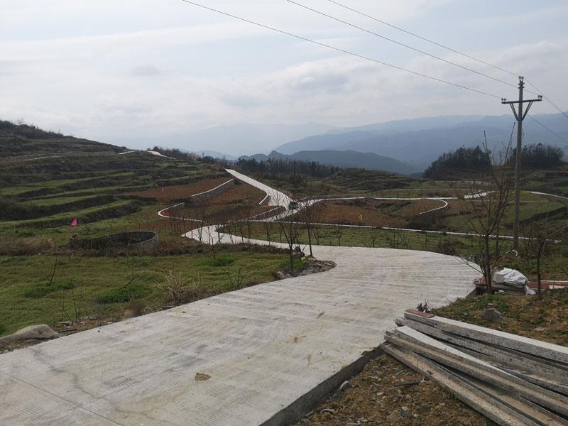 印江县2019年坡耕地水土流失综合治理工程